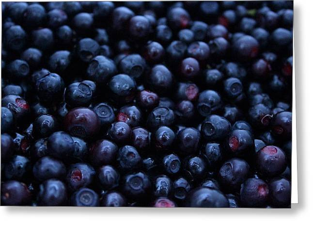 Huckleberry Greeting Cards - Huckleberries Greeting Card by Chestnut Mocha