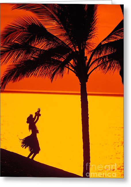 Aloha From Hawaii Greeting Cards - Hula At Sunset Greeting Card by Ron Dahlquist - Printscapes