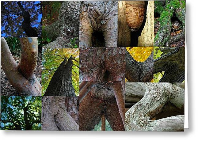 Human Forms In Nature Greeting Card by Juergen Roth