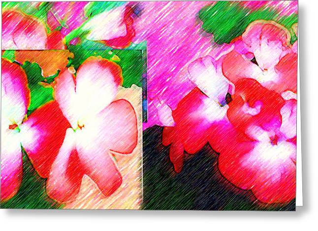 Red Geraniums Digital Greeting Cards - Humble Beauty Greeting Card by Madalena Lobao-Tello