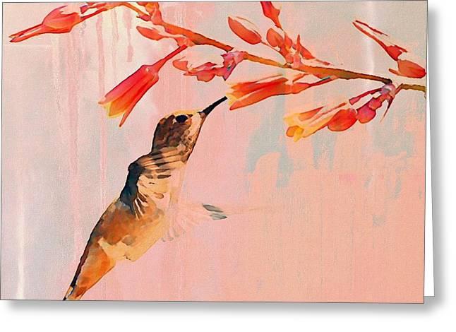 Feeding Birds Greeting Cards - Hummer Art Greeting Card by Fraida Gutovich