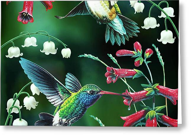 Humming Birds 2 Greeting Card by JQ Licensing