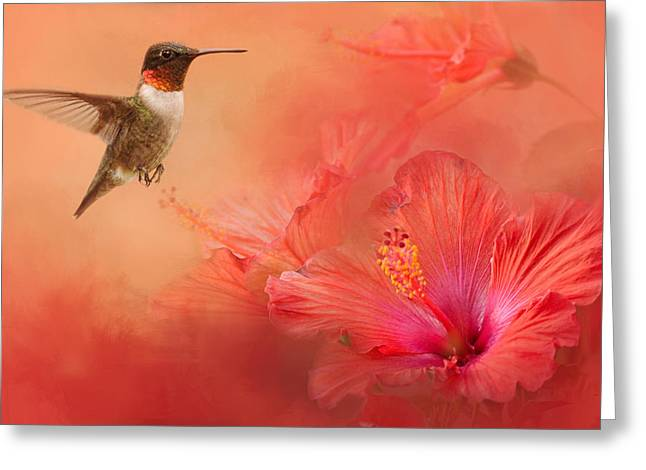Textured Floral Greeting Cards - Hummingbird and Peach Hibiscus Greeting Card by Jai Johnson