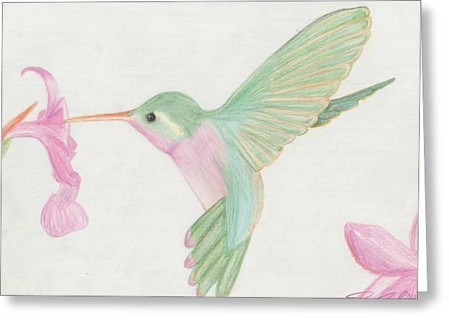 Hummingbird Greeting Card by Joanna Aud