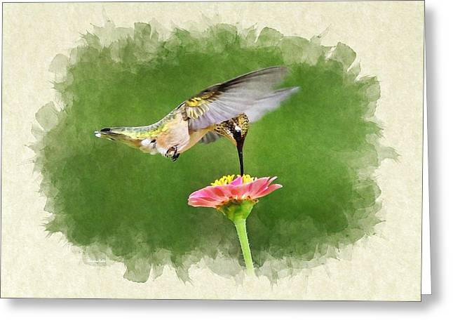 Hovering Mixed Media Greeting Cards - Hummingbird Sun Sweet Blank Note Card Greeting Card by Christina Rollo