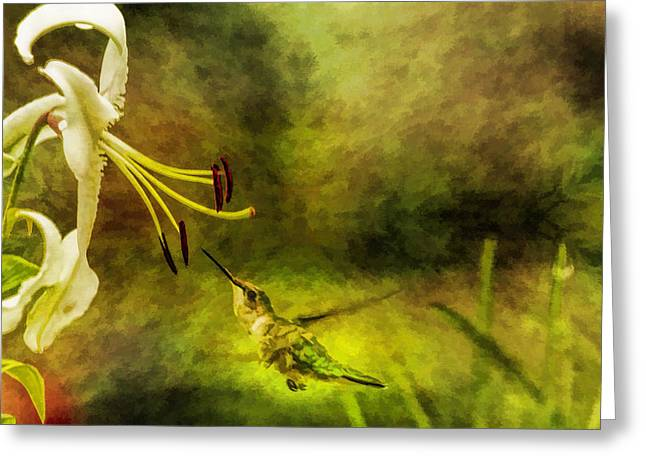 Florescent Lighting Greeting Cards - Hummingbird White Pendant Flower And Textures Greeting Card by Geraldine Scull