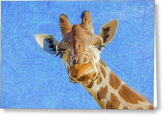 Bedroom Art Greeting Cards - Humorous Giraffe  Greeting Card by Sharon Norman
