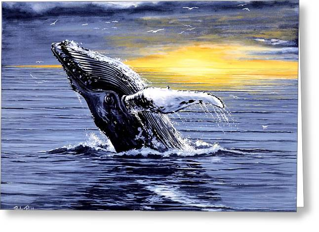 Humpback Whale Paintings Greeting Cards - Humpback Whale Breaching Greeting Card by Bob Patterson