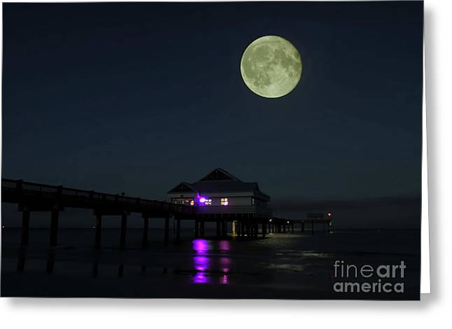 Hunters Moon At Pier 60 Greeting Card by D Hackett