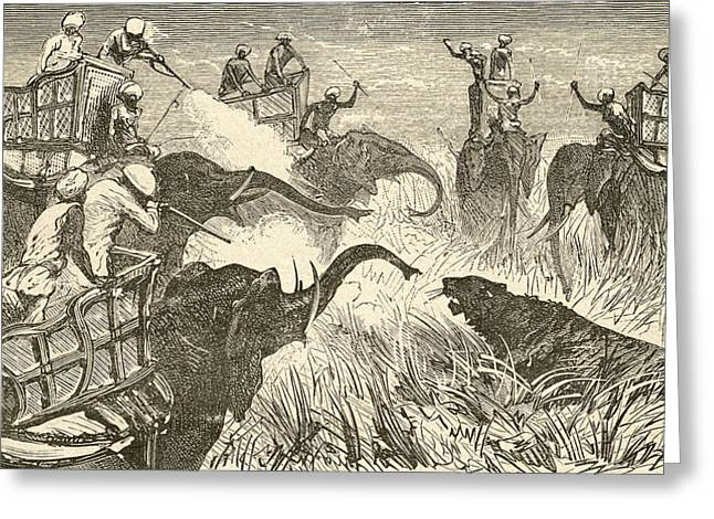 Dangerous Drawings Greeting Cards - Hunters Mounted On Elephants, During A Greeting Card by Ken Welsh