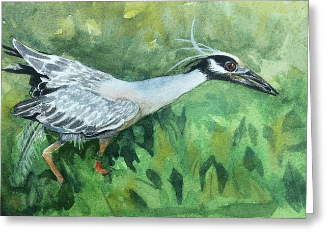 Hunting In The Mangroves Greeting Card by Kris Parins