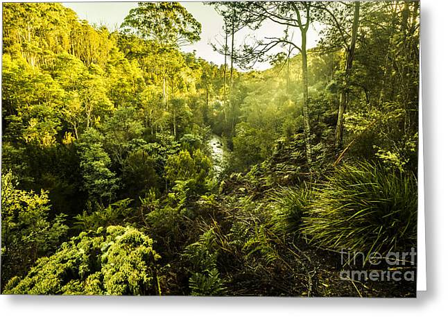 Huon Valley Greeting Card by Jorgo Photography - Wall Art Gallery