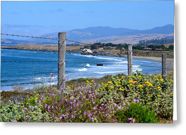 Big Sur Beach Greeting Cards - Hwy 1 Greeting Card by Meghan Pasquariello
