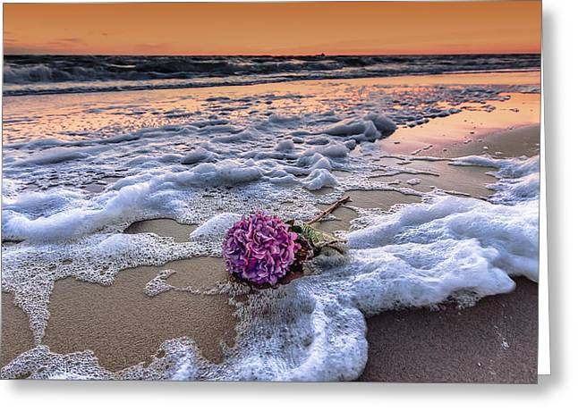 Menu Greeting Cards - Hydrangea washed up on the beach Greeting Card by Alex Hiemstra