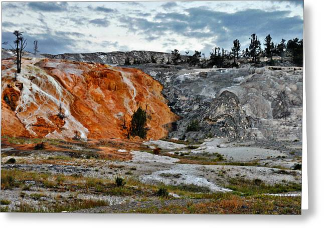 Terrace Greeting Cards - Hymen Terrace at Mammoth Hot Springs - Yellowstone National Park WY Greeting Card by Christine Till