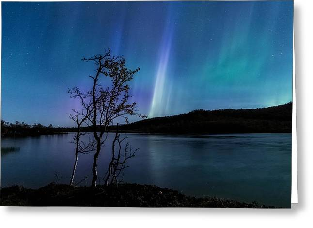 Hymn Of The Night Greeting Card by Tor-Ivar Naess