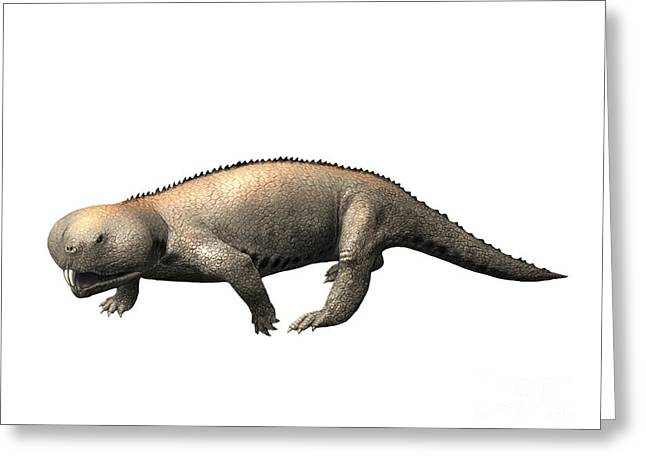 Zoology Greeting Cards - Hyperodapedon Is A Rhynchosaur Greeting Card by Nobumichi Tamura