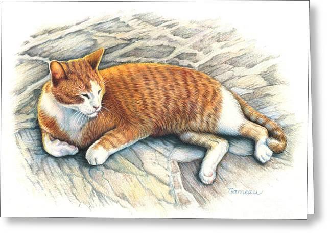 I Am Tiger Greeting Card by Catherine Garneau