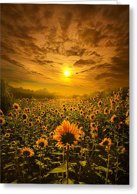 I Believe In New Beginnings Greeting Card by Phil Koch