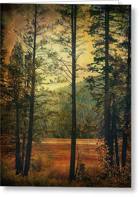 Textured Landscapes Greeting Cards - I Dont Know What to Believe In Greeting Card by Laurie Search