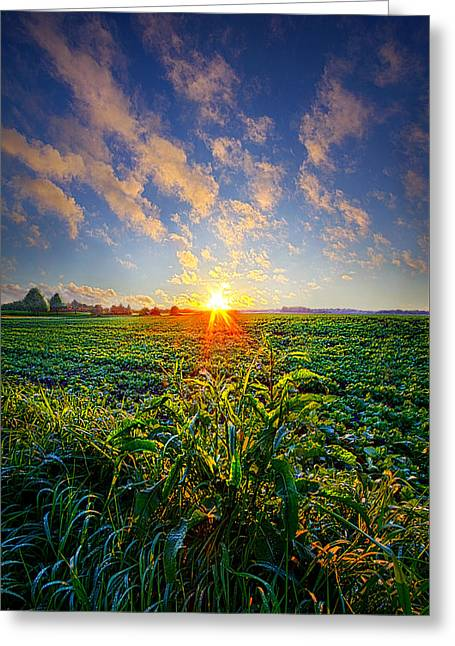 I Don't Live To Be Greeting Card by Phil Koch