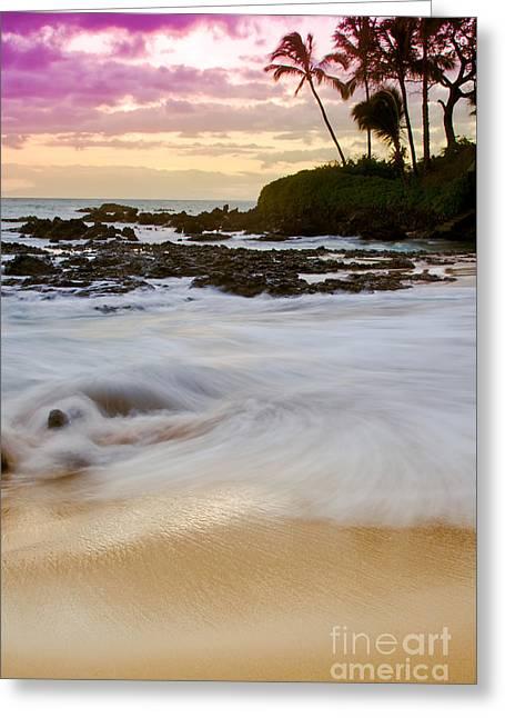 My Ocean Greeting Cards - I found my dream Greeting Card by Sharon Mau