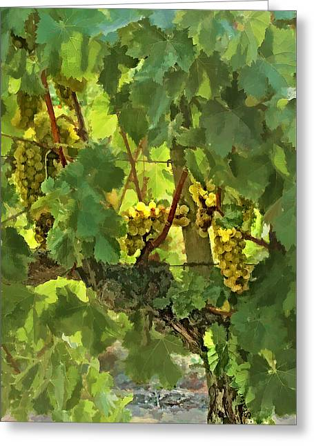 Trellis Greeting Cards - I Heard It On The Grapevine Greeting Card by Patricia Stalter