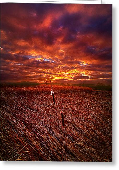 I Know That We Can Make It, You And Me Greeting Card by Phil Koch