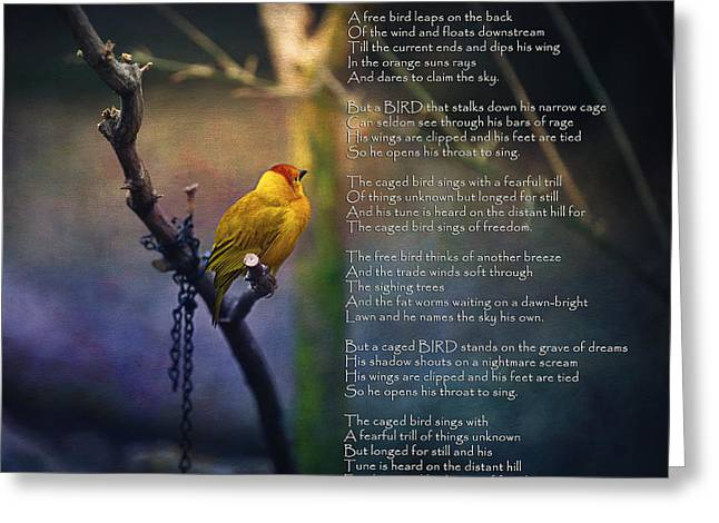 Maya Angelou Greeting Cards - I Know Why the Caged Bird Sings By Maya Angelou Greeting Card by Maria Angelica Maira