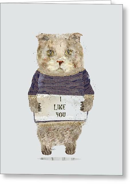 Kitten Prints Greeting Cards - I Like You Greeting Card by Bri Buckley