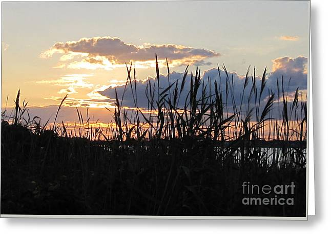 Sunset Prints Greeting Cards - I Love How You Love Me Greeting Card by Deborah A Andreas