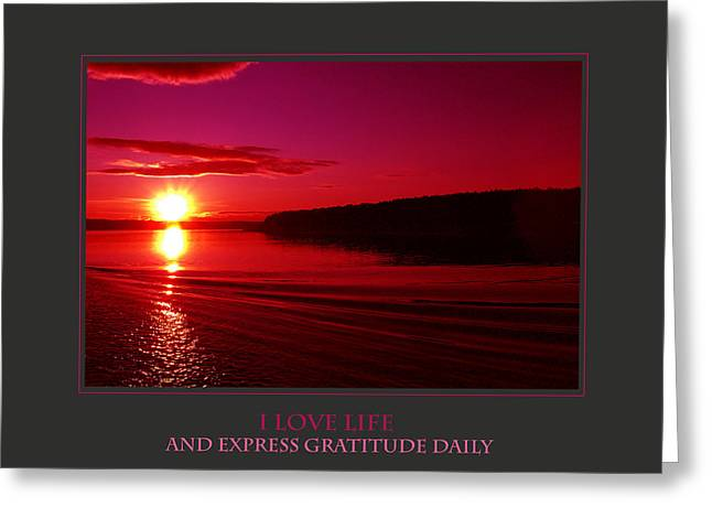 Affirmation Greeting Cards - I Love Life And Express Gratitude Daily Greeting Card by Donna Corless