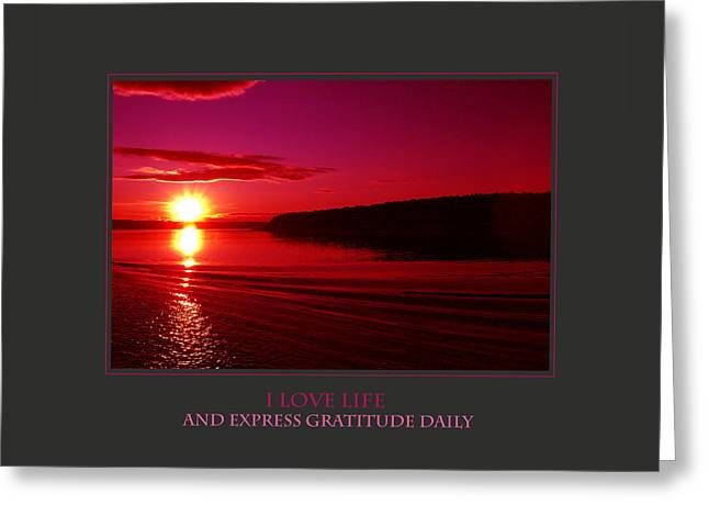 I Love Life And Express Gratitude Daily Greeting Card by Donna Corless