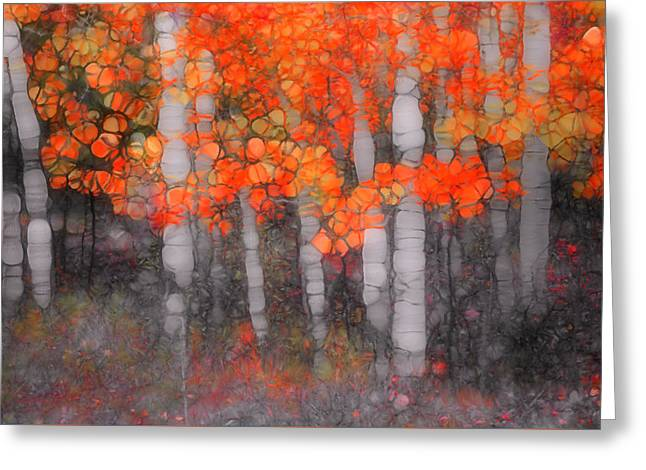 Tree Lines Digital Greeting Cards - I Love You in Orange Greeting Card by Tara Turner