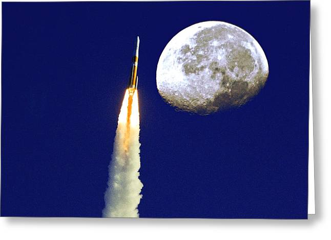 I Need My Space Greeting Card by Roger Wedegis