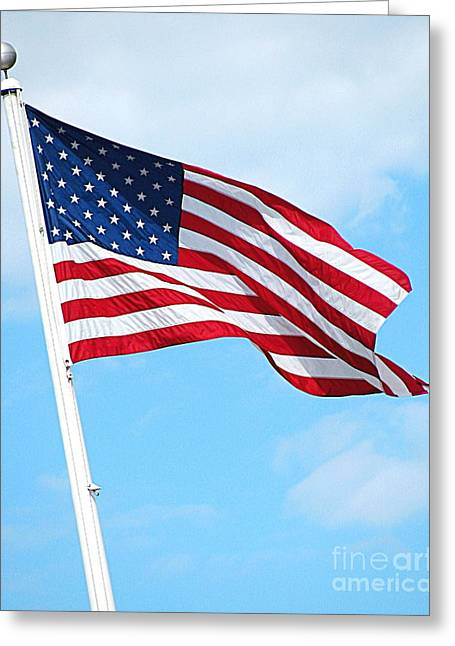 Flying Flag Greeting Cards - I Pledge Allegiance Greeting Card by Colleen Kammerer