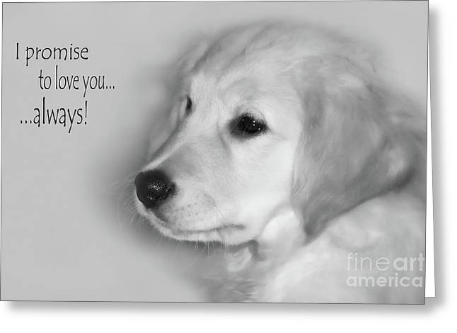 Puppies Digital Greeting Cards - I Promise to Love You Always Greeting Card by Cathy  Beharriell