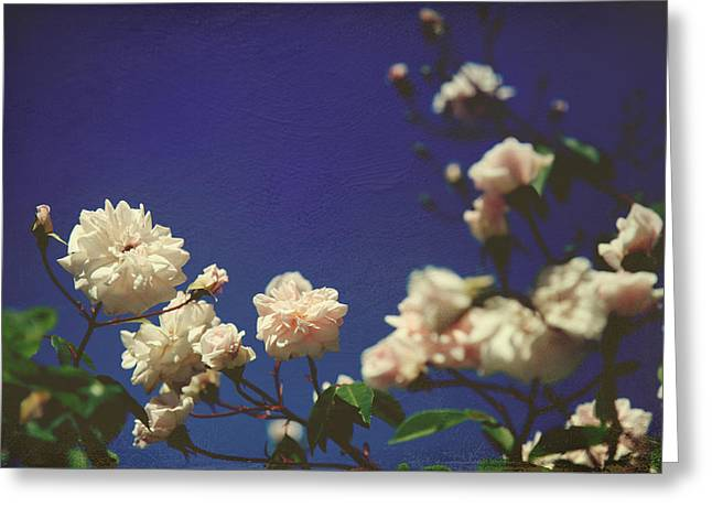 Rose Bushes Greeting Cards - I Swear I Recognize Your Breath Greeting Card by Laurie Search