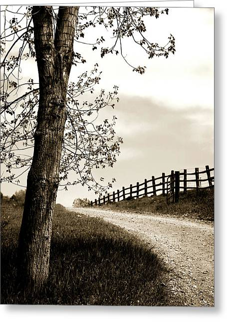 Gravel Road Greeting Cards - I Walk the Gravel Road 2 Greeting Card by Marilyn Hunt