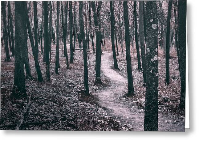 Ice Age Trail Near Lapham Peak Greeting Card by Scott Norris