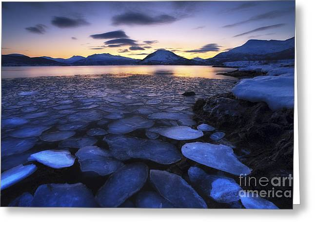 Ice Flakes Drifting Against The Sunset Greeting Card by Arild Heitmann