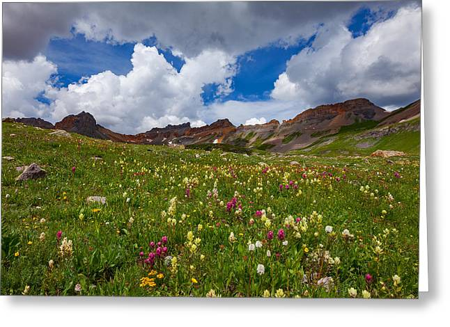 Ice Lake Meadow Greeting Card by Darren White