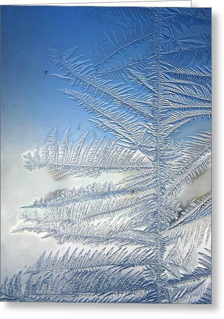 Rhonda Barrett Greeting Cards - Ice Tree Greeting Card by Rhonda Barrett