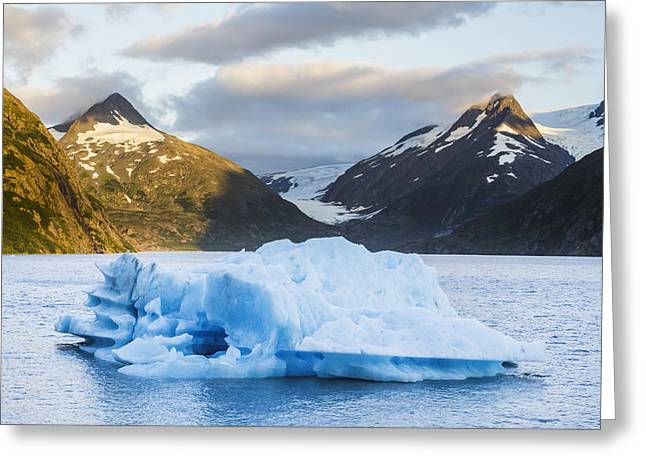 Portage Greeting Cards - Iceberg In Portage Lake, Portage Greeting Card by Michael DeYoung