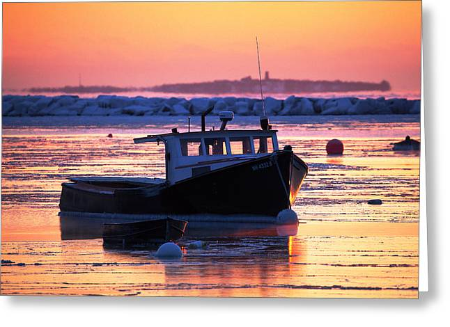 New England Snow Scene Greeting Cards - Iced In Greeting Card by Eric Gendron