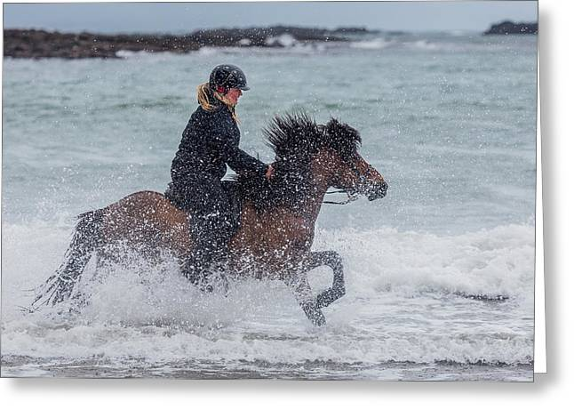 Icelandic Horse And Rider Greeting Card by Panoramic Images
