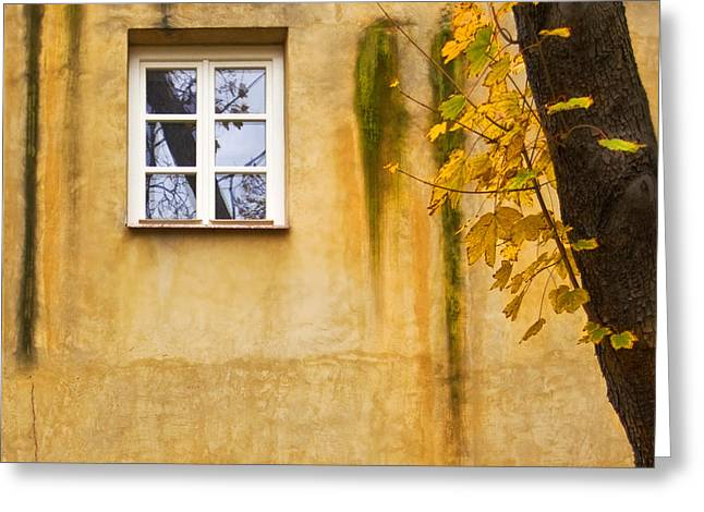 Photografie Greeting Cards - Ich Warte Unten Greeting Card by Renata Vogl