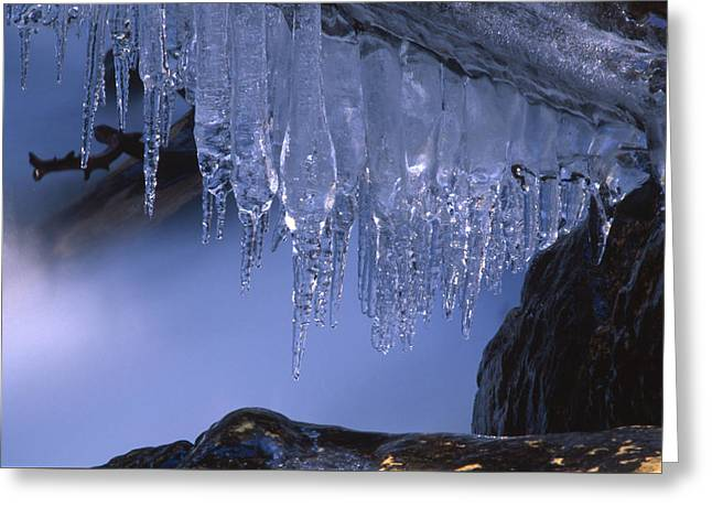 North Fork Greeting Cards - Icicles - North Fork Bishop Creek Greeting Card by Soli Deo Gloria Wilderness And Wildlife Photography