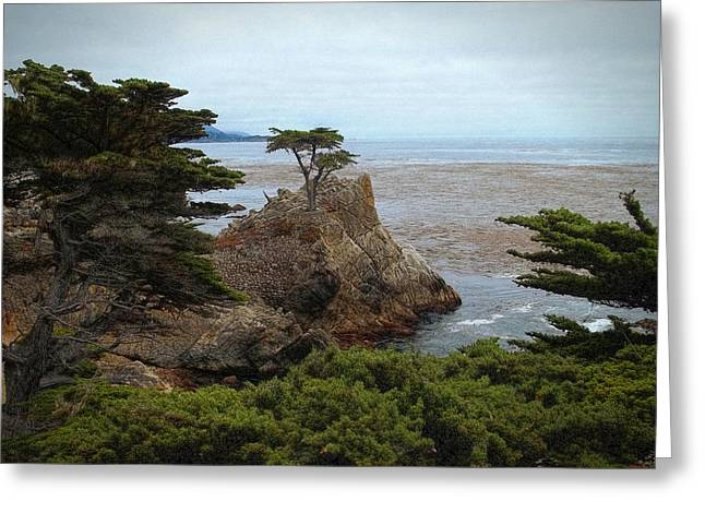 Scenic Drive Greeting Cards - Icon Of Pebble Beach Greeting Card by Glenn McCarthy Art and Photography