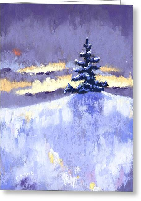 Christmas Pastels Greeting Cards - Icy Reflections Greeting Card by Christine Camp